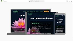 Material Design Resizer | BlueSky Perth Custom Web + App Development