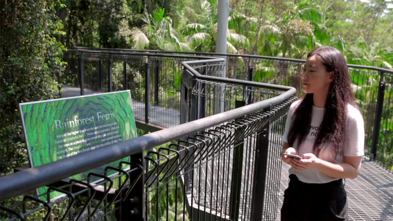 Beacon Technology - Tamborine Rainforest Skywalk | BlueSky Perth Custom Web + App Development